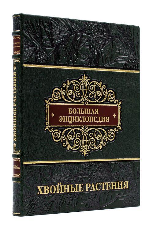 Хвойные растения, большая энциклопедия, купить